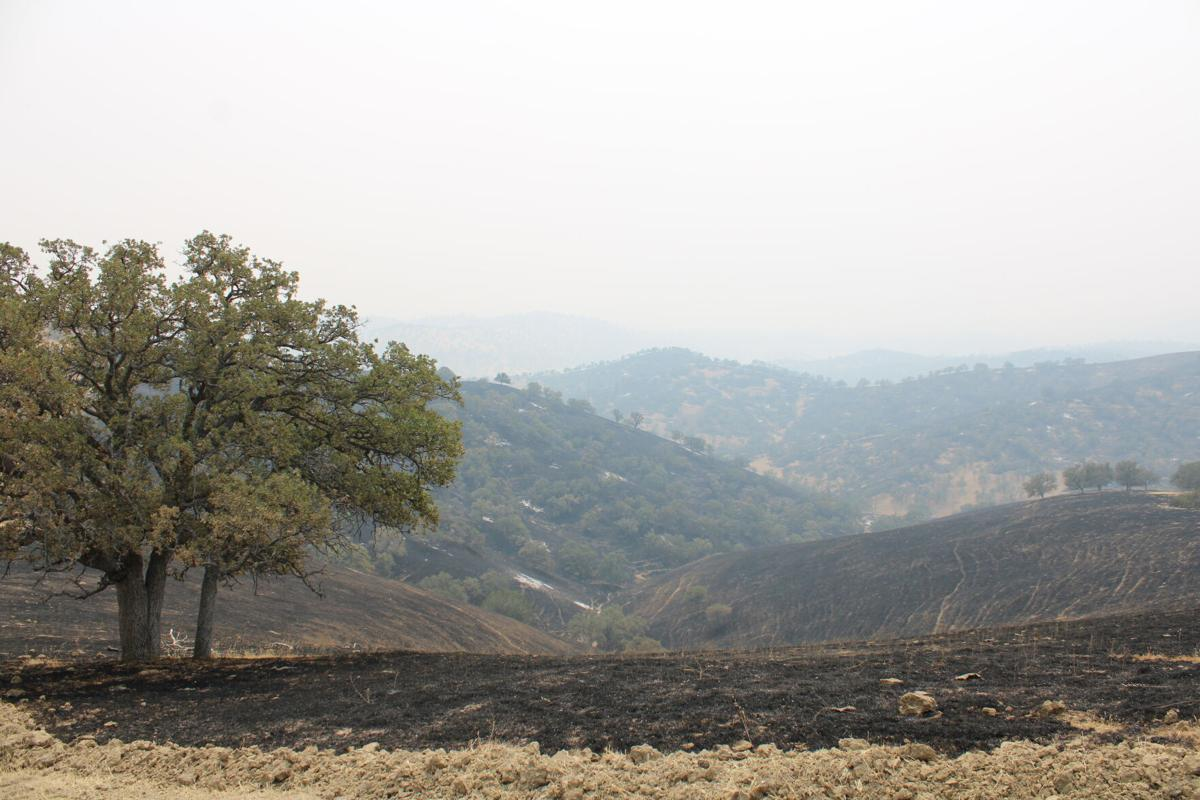 Canyon Fire Zone