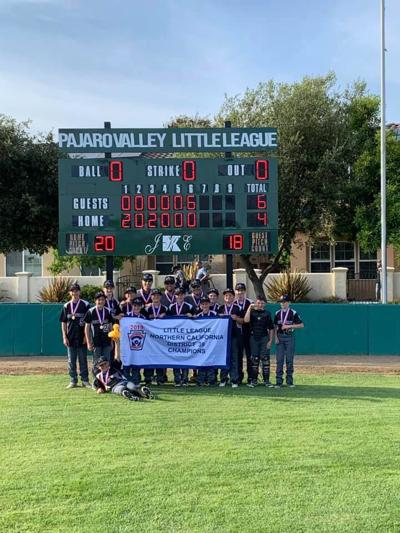 Scotts Valley Little League Majors Wins District 39 Championship