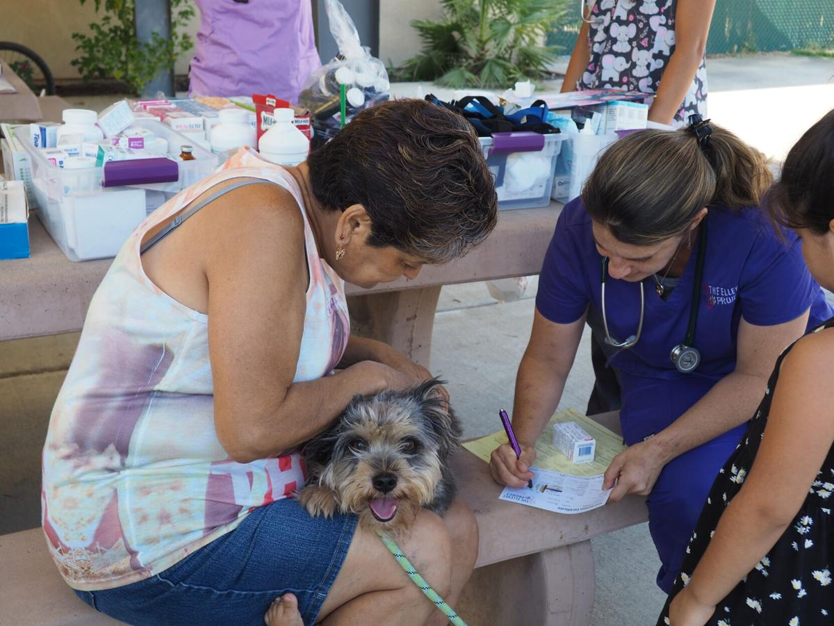 Non-profits offer free pet care in Patterson