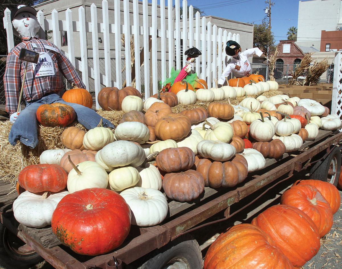 Downtown Pumpkin Patch