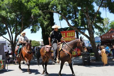 Sheriff's Mounted Patrol