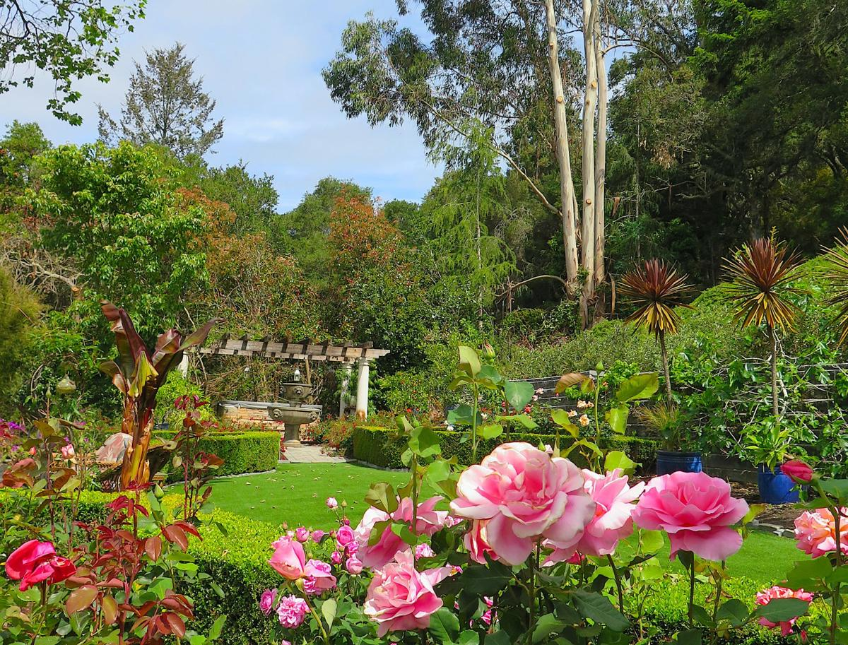 Corbett and Sheri's Vineyard garden invites you to stop and stay awhile.