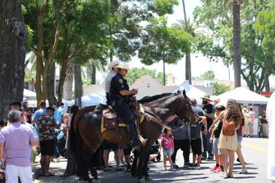 Sheriff's Mounted Patrol