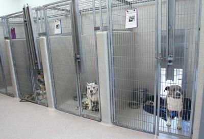 Tracy Animal Shelter