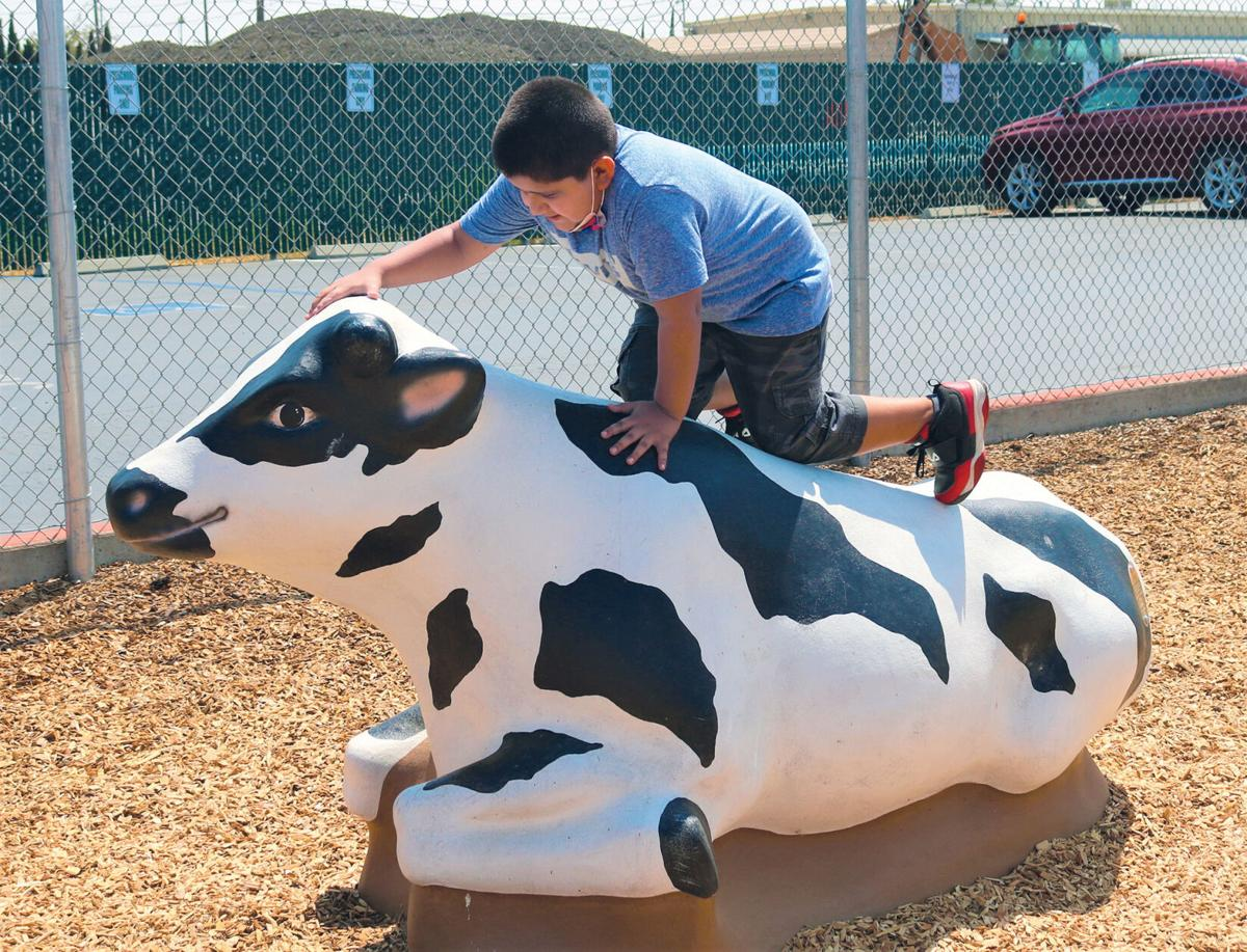 Banta playground