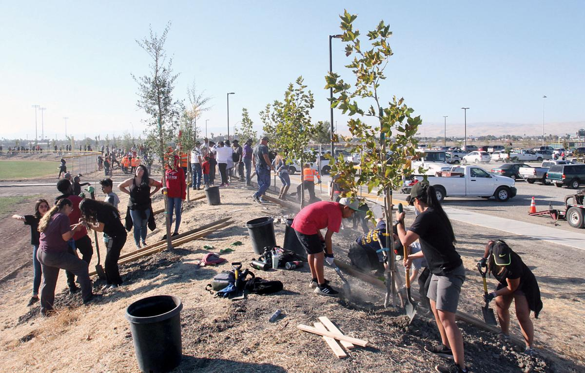 Arbor Day in Tracy
