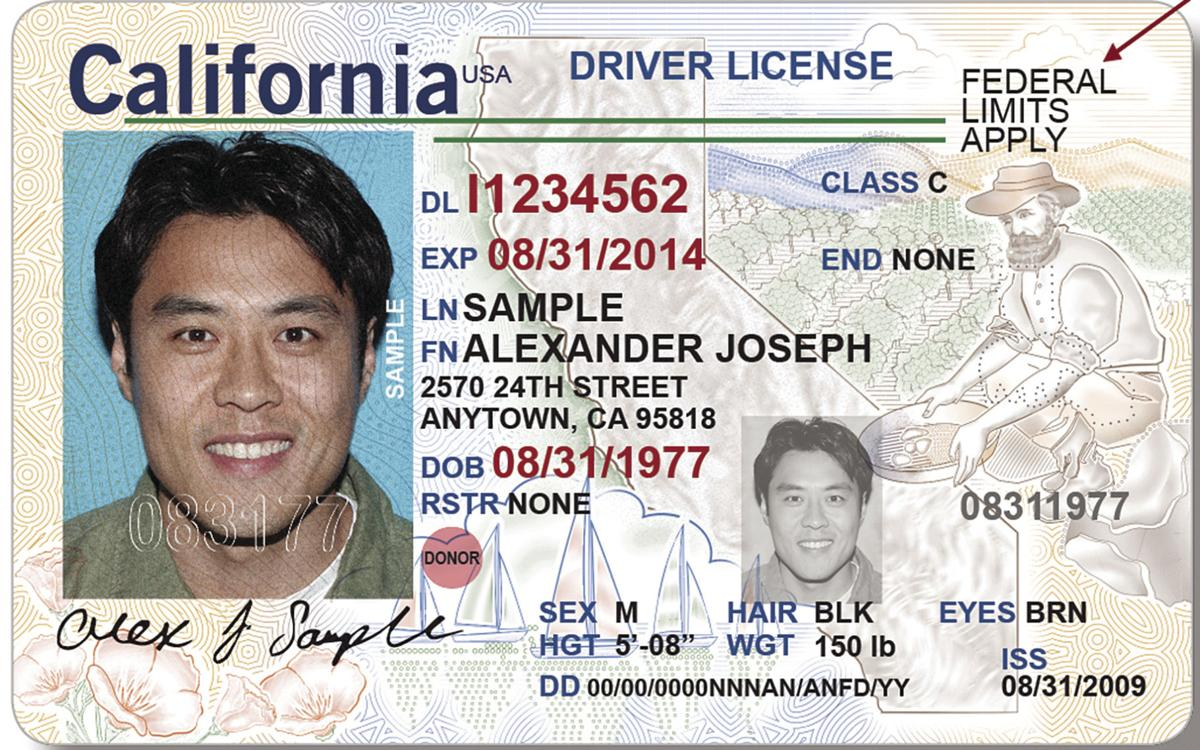 Enhanced Driver's Licence - Impact on Canada - US Border Crossings