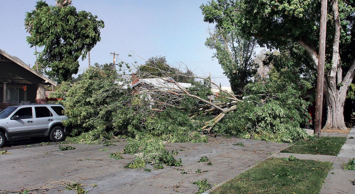 High winds hit Tracy