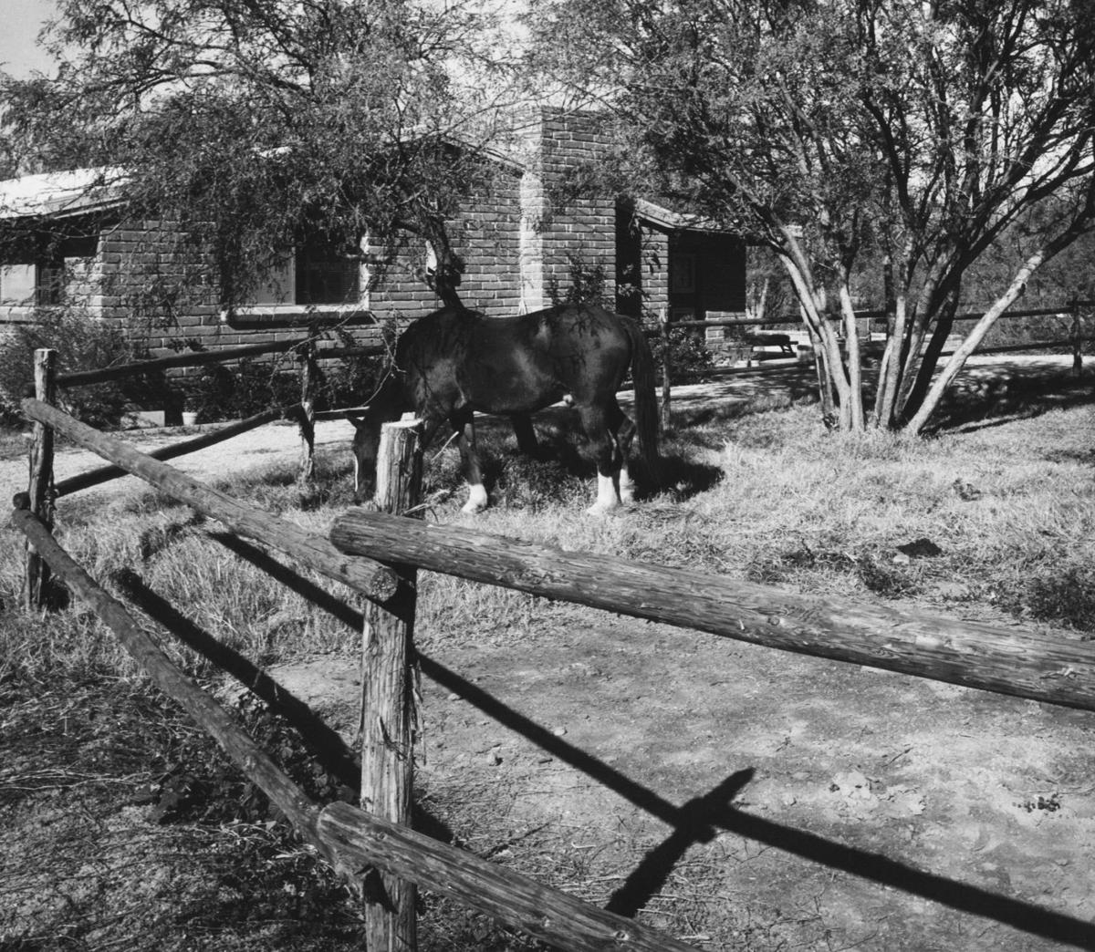 1958 Tucson home photos: History at the writer's house