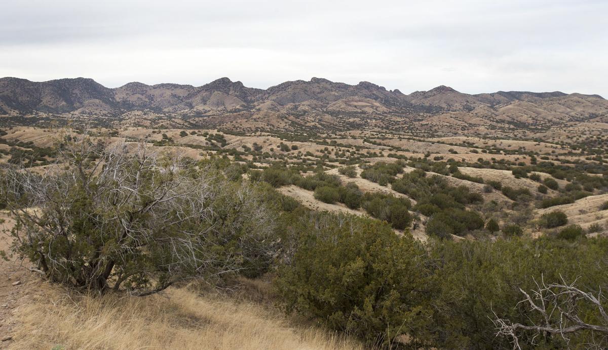 Rosemont Mine site