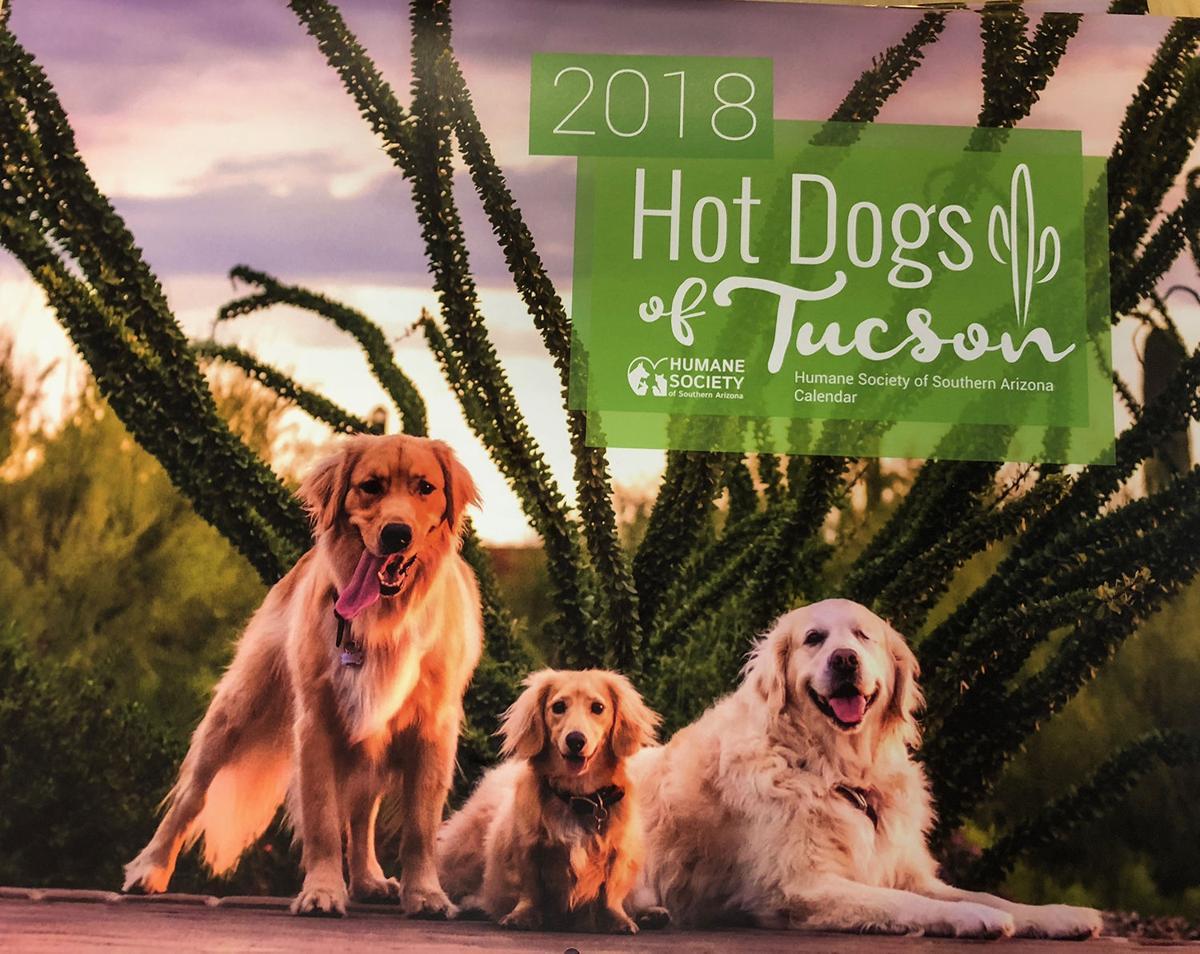 Hot Dogs Calendar 2018