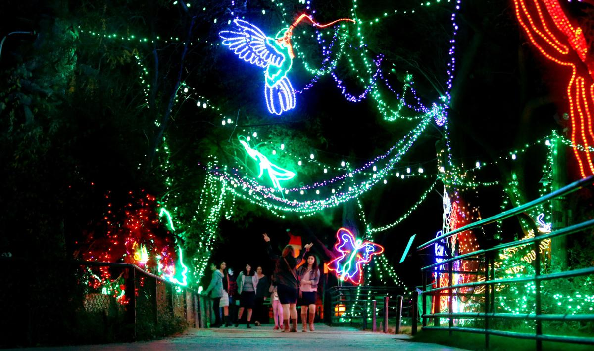 Zoo Lights Now Open At Reid Park In Tucson Local News