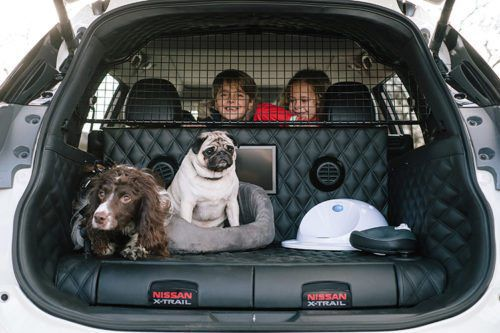 Nissan X-Trail 4Dogs Is The Most Dog-friendly Car Of All Time