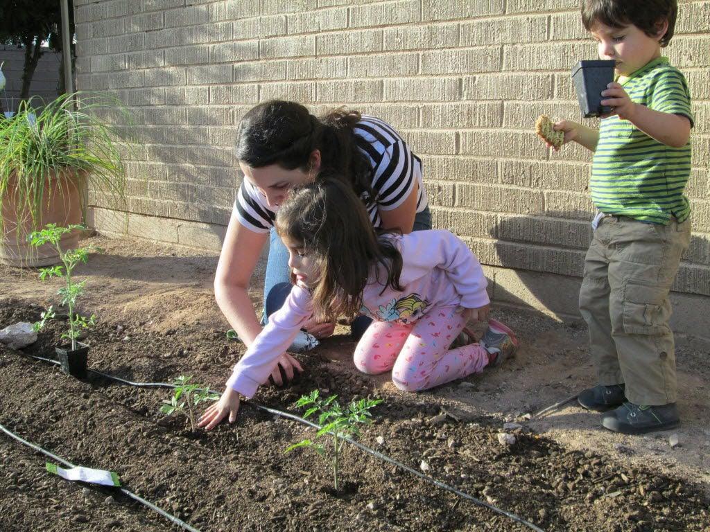 Family plants a garden