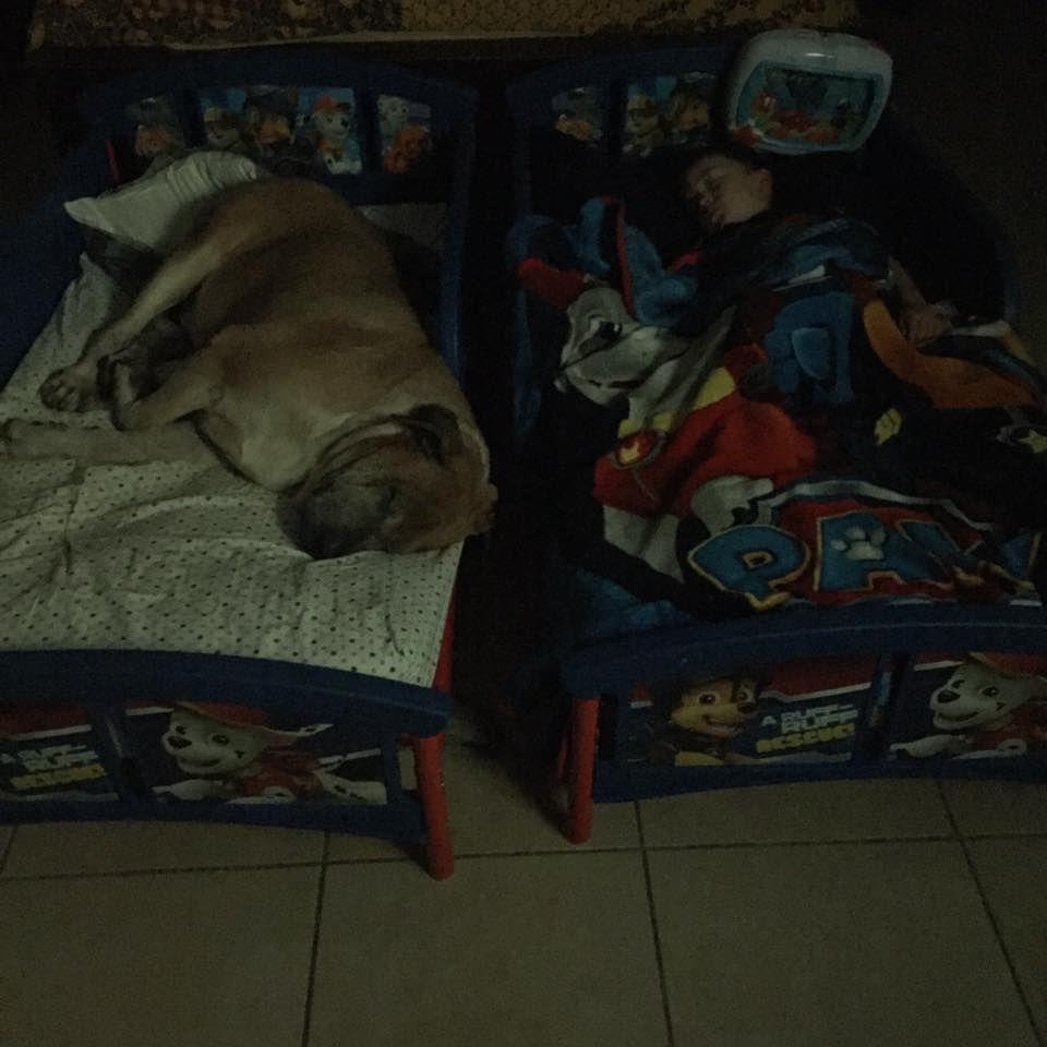 Walter at home