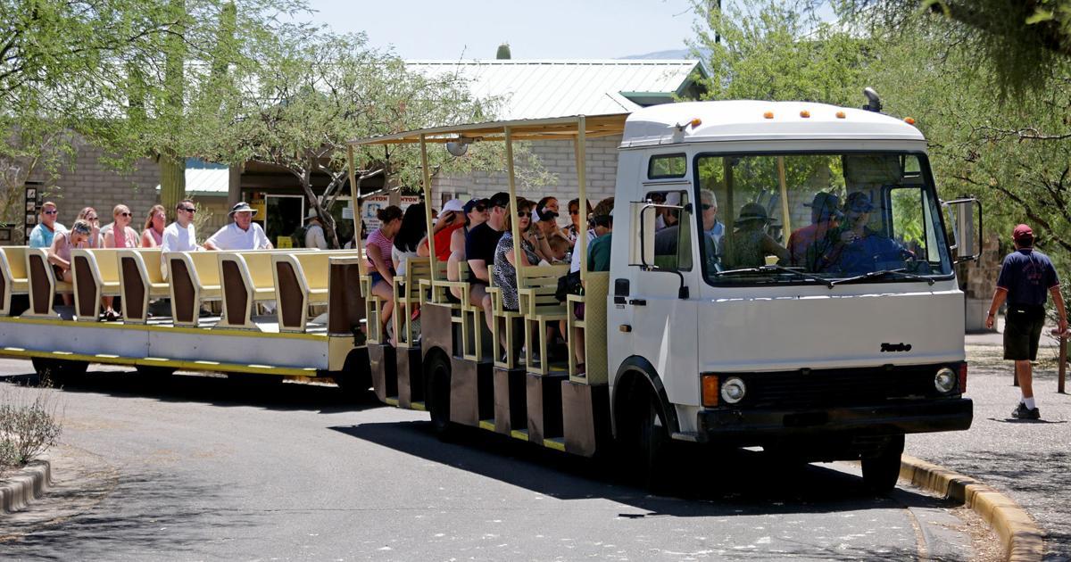 Sabino Canyon shuttle