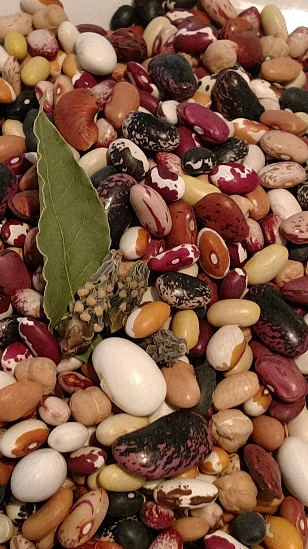 21 bean mix