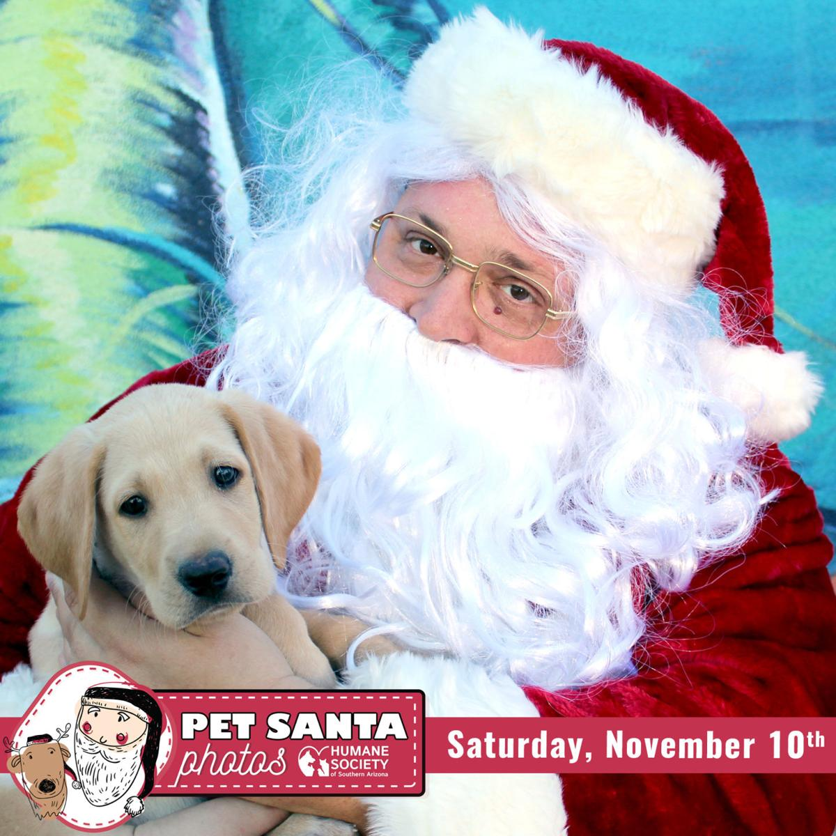 Your pet can take photos with Santa at Tucson Humane Society | Local ...