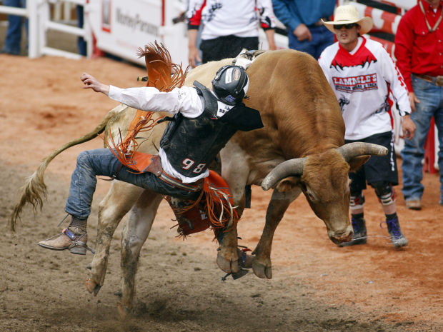 Photos Calgary Stampede Rodeo Tucson Com