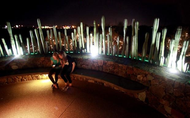Photos Holiday Nights At Tohono Chul Park