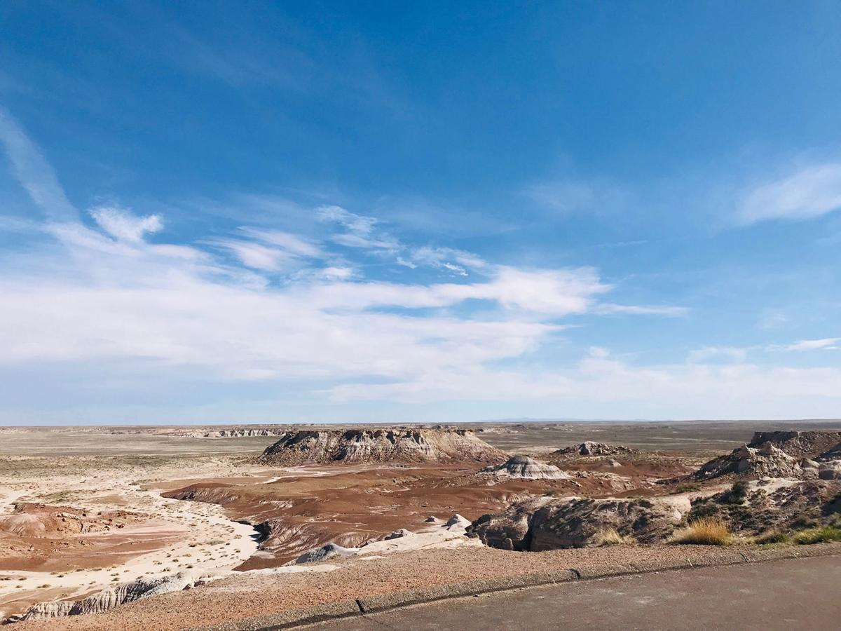 Environmental groups sue to block oil/gas leases near Petrified Forest in Arizona
