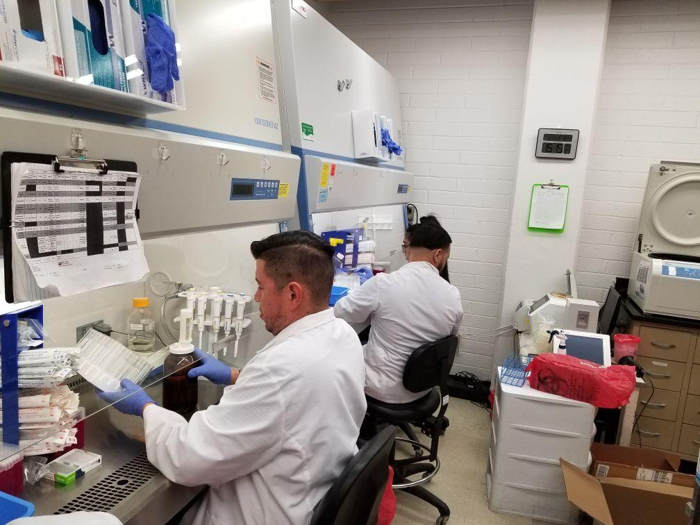 UA researchers work on COVID-19 test kits