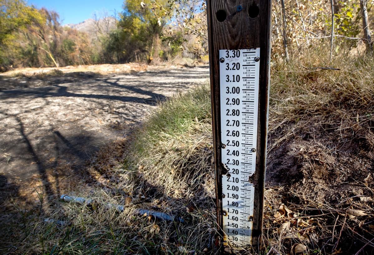Sabino Creek, 2020
