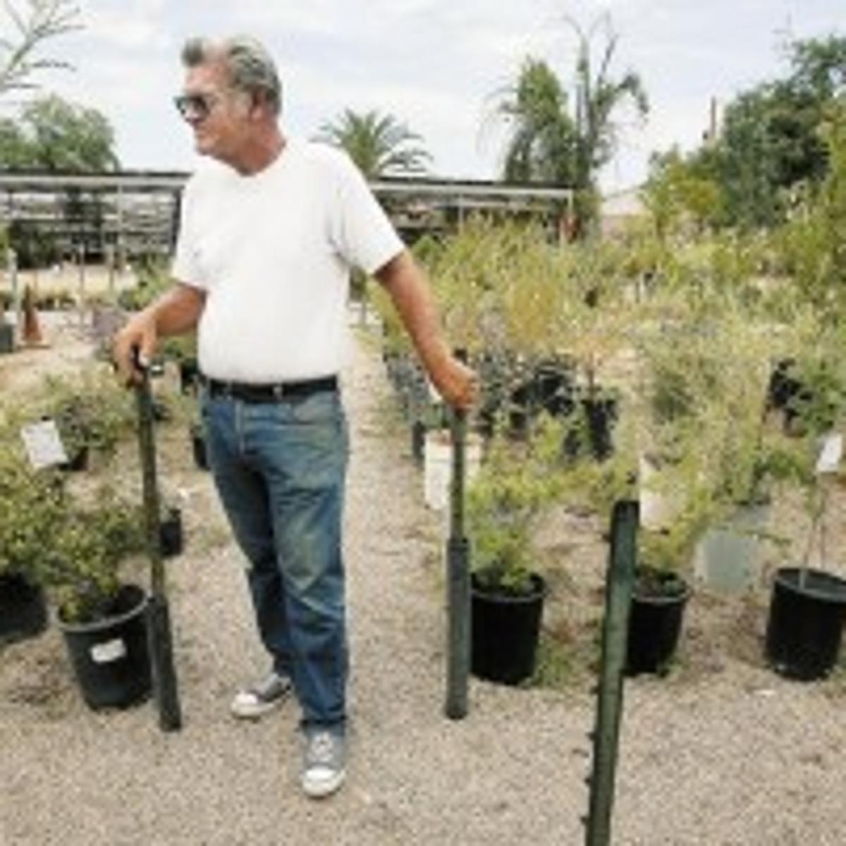 Longtime Plant Nursery Is Closing