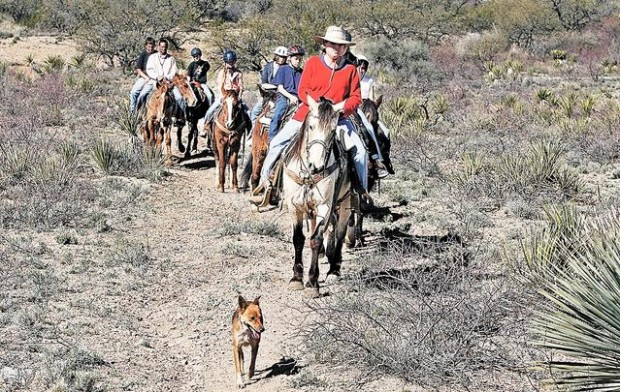 Horse camp for young riders | East Side | tucson com