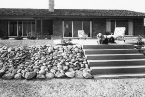 1966 Tucson home photos: The poodles approve of this new home