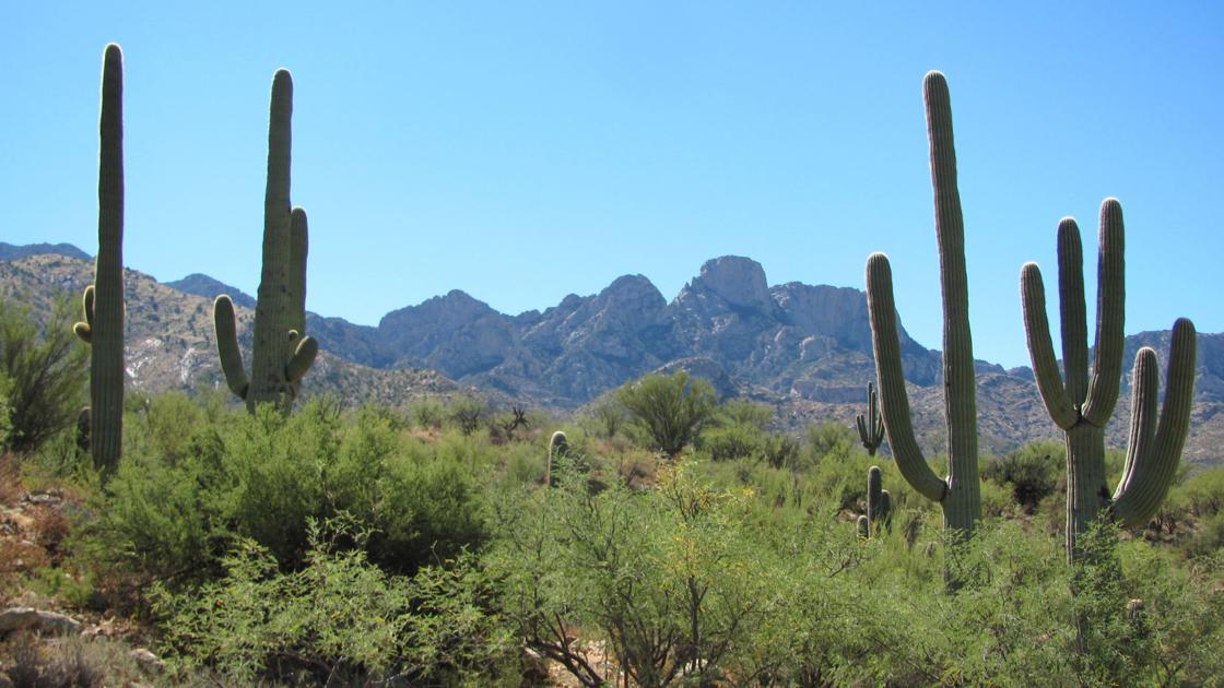 Tucson weather: Showers and thunderstorms possible east of Tucson