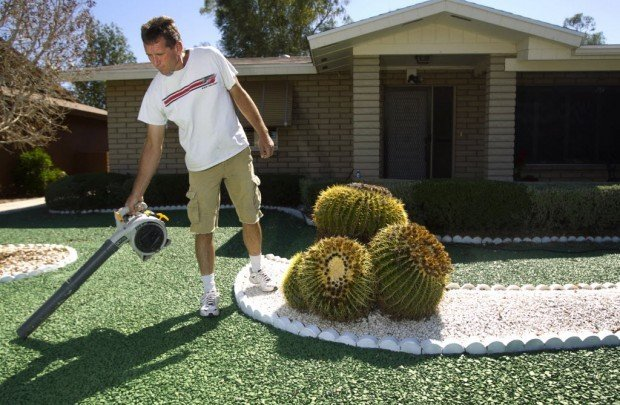 10 Reasons To Think Twice About Artificial Turf (From A