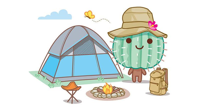 Camping cactus
