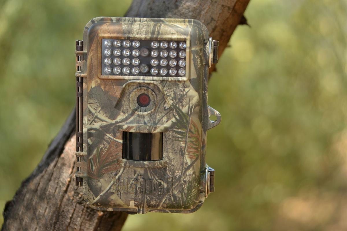 trail camera 3