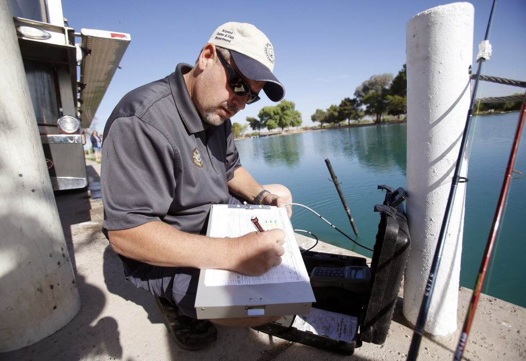 New Trout For Tucson Lakes Local News