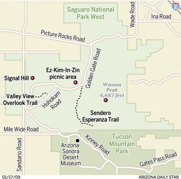 Saguaro National Park Its delightful on dirt Home Life