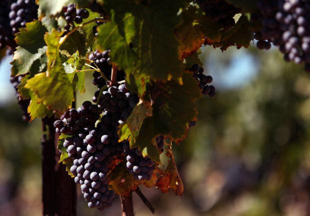 Wine country destination