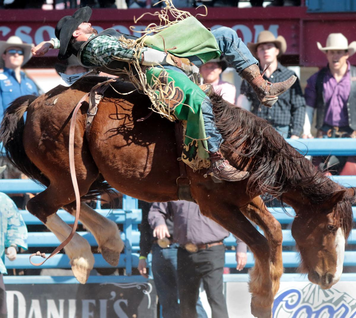 Devan Reilly Conquers Feisty Killer Bee To Win Bareback