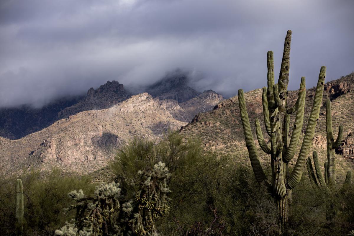 Tucson Weather