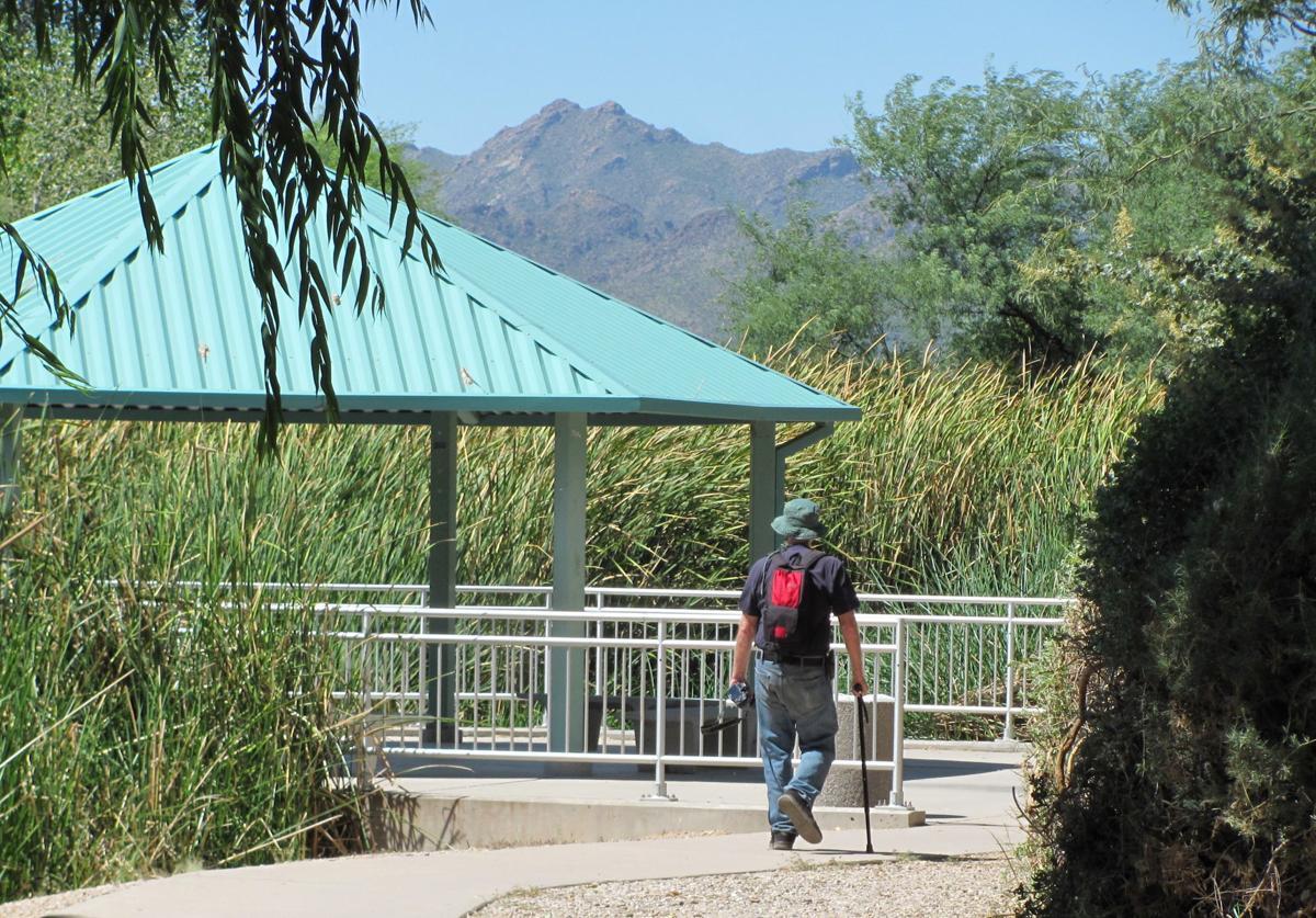 Visitor in lush landscape