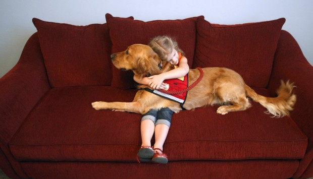 Courthouse dog will comfort kids as they go through a stressful time