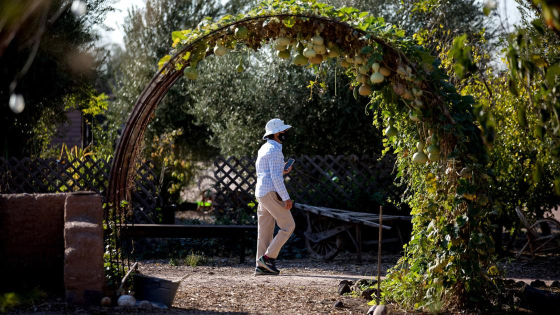 Mission Garden preserves rich history, cultures of Tucson