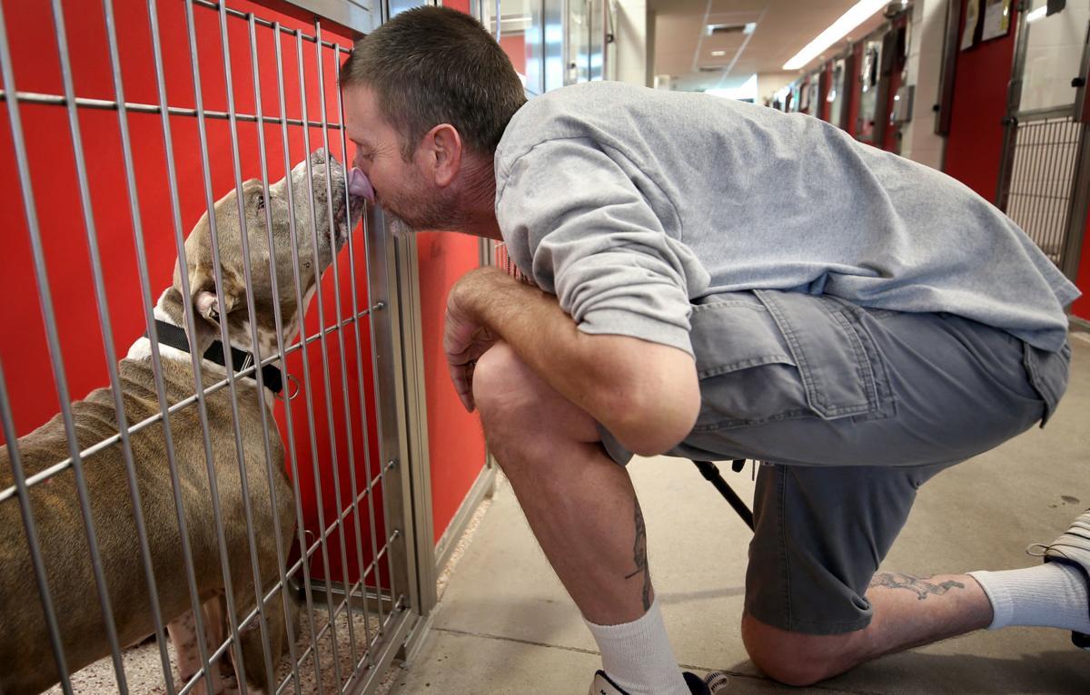 Pima Animal Care Center (copy)
