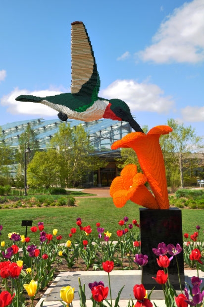 Genial U201cHummingbird And Floweru201d Will Be On Display During The Botanical Gardens  Exhibit, Which Opens Sept. 11, 2015. Courtesy Tucson Botanical Gardens