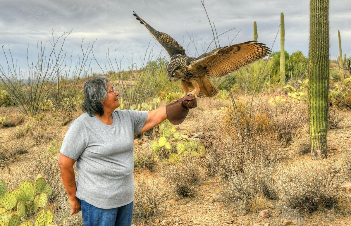 Museo del Desirto de Arizona Sonora