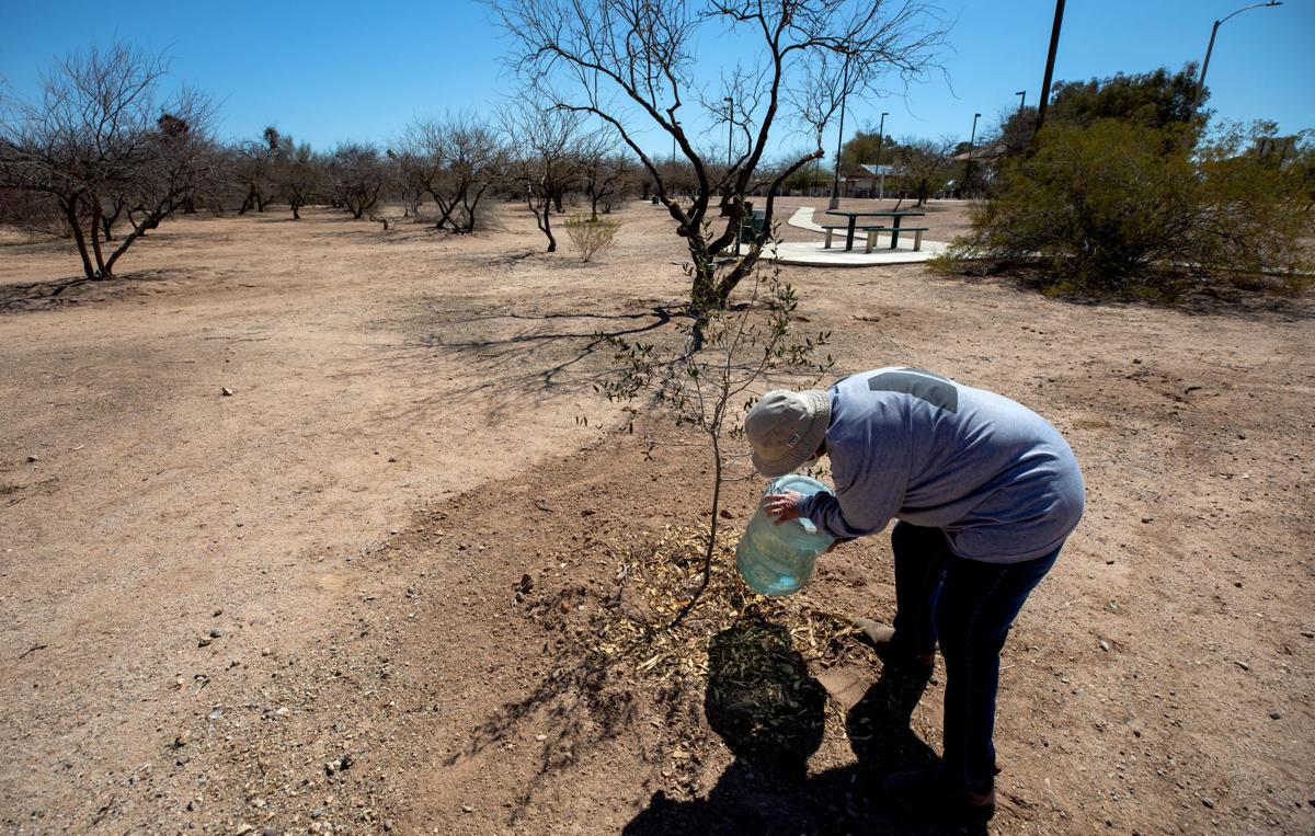 Heat inequality, neighborhood in south part of Tucson