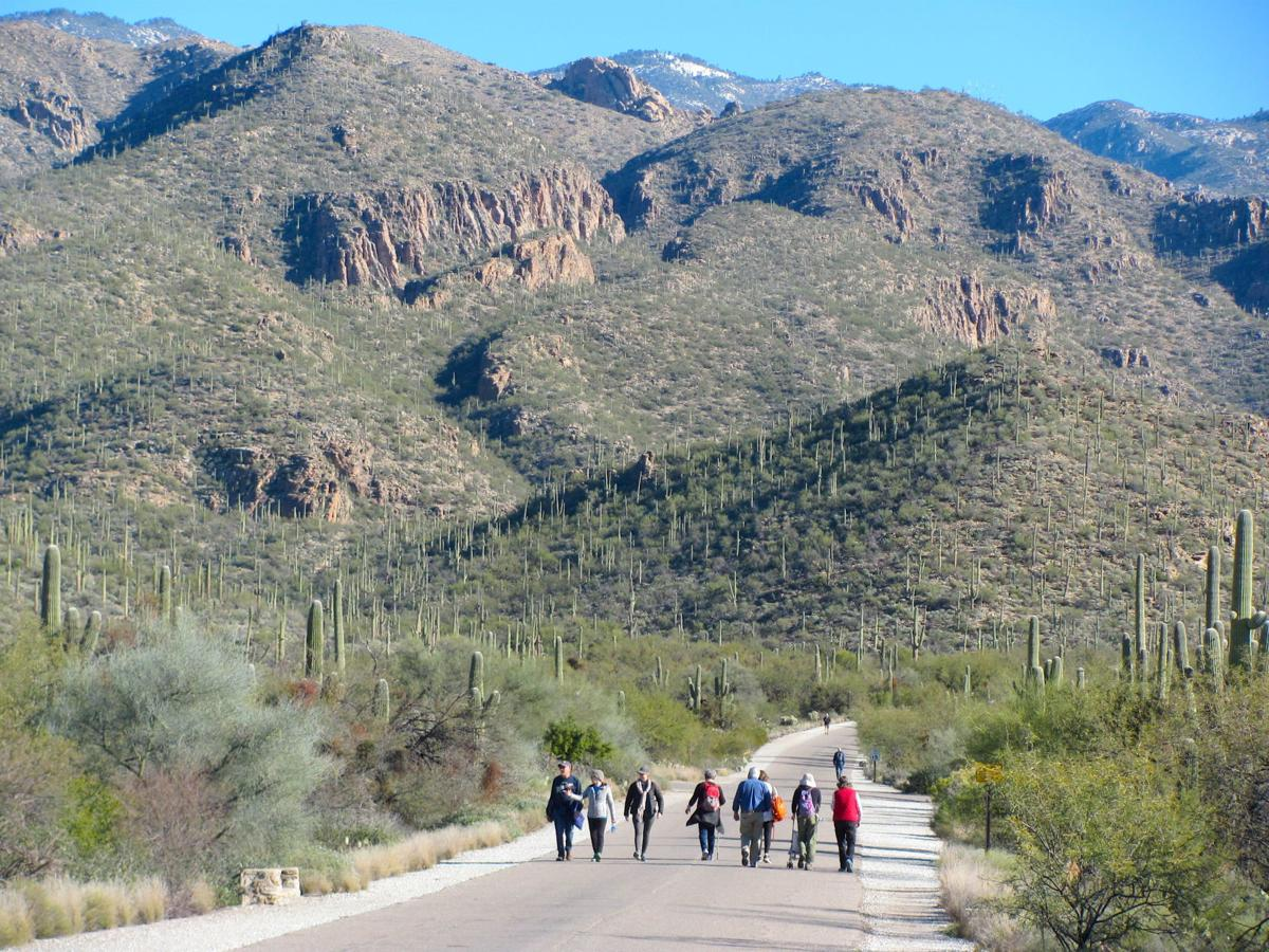 Tucson In The 70s >> Mild weather in store for Tucson | Local news | tucson.com