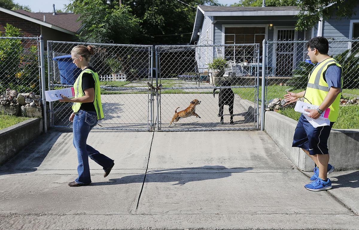 Pima Animal Care drops barking dog mediation contract