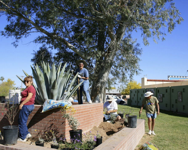 Town of Ajo is awarded wildlife-friendly title
