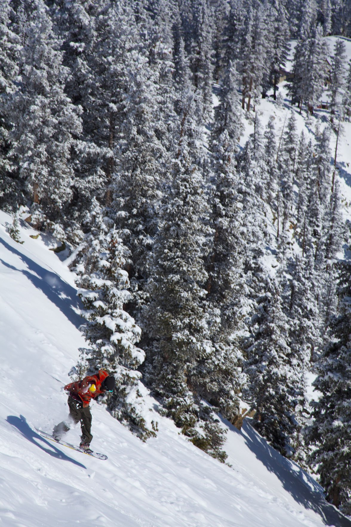 Travel-Trip-Ski Taos